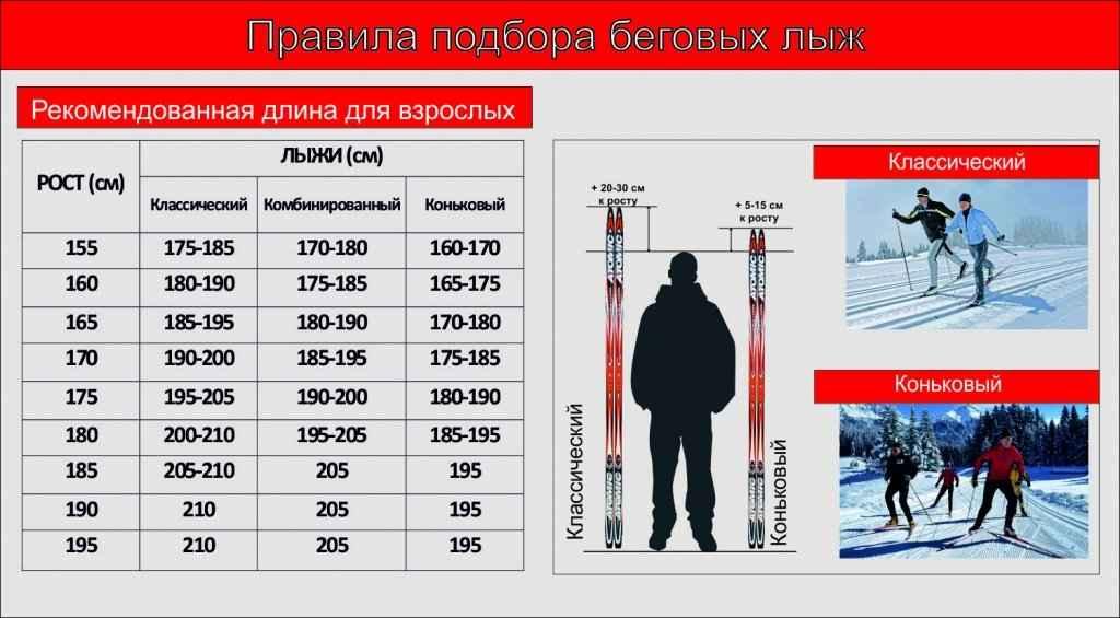 если как правильно выбрать лыжи по росту (торгово-производственная компания)